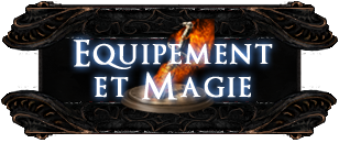 DKS2-Wiki-Homepage-Files-equipement.png